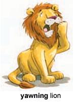 cute lion :)