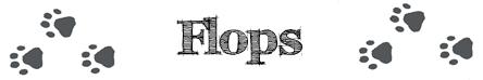 lesemonat-Flops