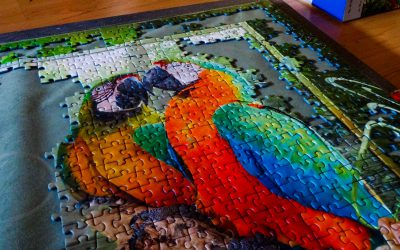 Ravensburger Puzzle-Flatrate (unpacking)