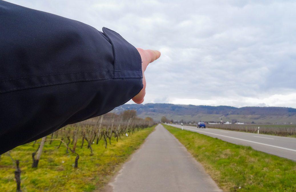 Ohne Ausdauer an der Mosel – Teil 2: Spaziergang an der Mosel