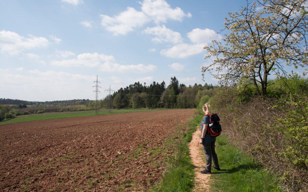 Das erste Mal Traumschleife | Die Mühlenbach-Schluchtentour